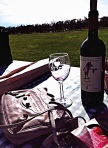 After our wine tour and tasting at Millbrooke we enjoyed a lovely picnic thanks to Kyles mom! We had tons of yummy little treats including a baguette of bread and a spread of cheese. We obviously had to buy a yummy bottle of wine from this winery. It was good to the last drop!